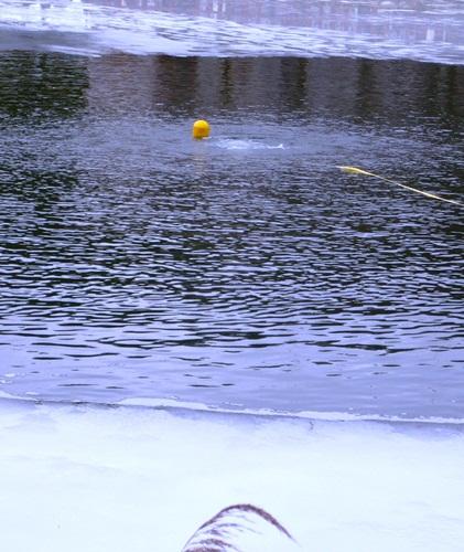 napowietrzanie drobnopęcherzykowe zbiornika wodnego